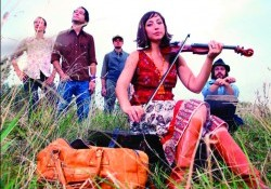 THE RAGBIRDS