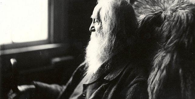 Walt Whitman education...for free!