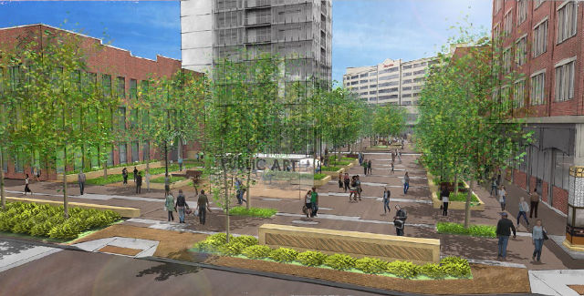 Pedestrian Mall Planning PDF