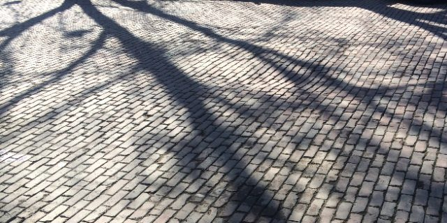 """""""I feel cobblestones beneath my feet and remember how my bike jolted as I had raced home against the day. The lights guide me forward, under sky and over stone, illuminating the tree that had sheltered our soft kisses and the sidewalk where I had lifted her after she stumbled"""" -- photo by Little Village staff"""