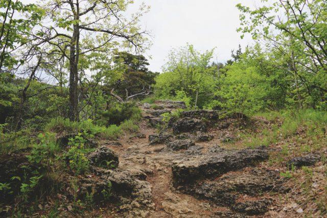 bb-trail