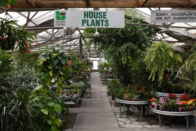 The greenhouses at Pleasant Valley Garden Center and Flower Shoppe in Iowa City are shown on Monday, Nov. 14, 2016. The store will remain open through the holidays. -- photo by Zak Neumann