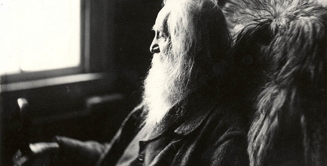 Walt Whitman education...for free!
