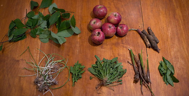 Foraging class!