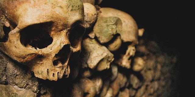 Boo! Skulls!