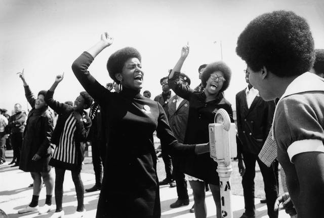 'The Black Panthers: Vanguard of a Revolution'